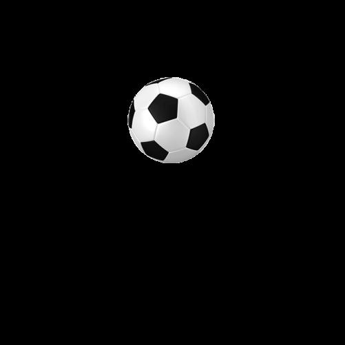 Світшот футбольний м яч в інтернет магазині Modalaz. Купити кофту футбольний  м яч в Україні - у Києві f51836379a3fd