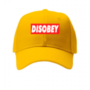 Кепка Disobey